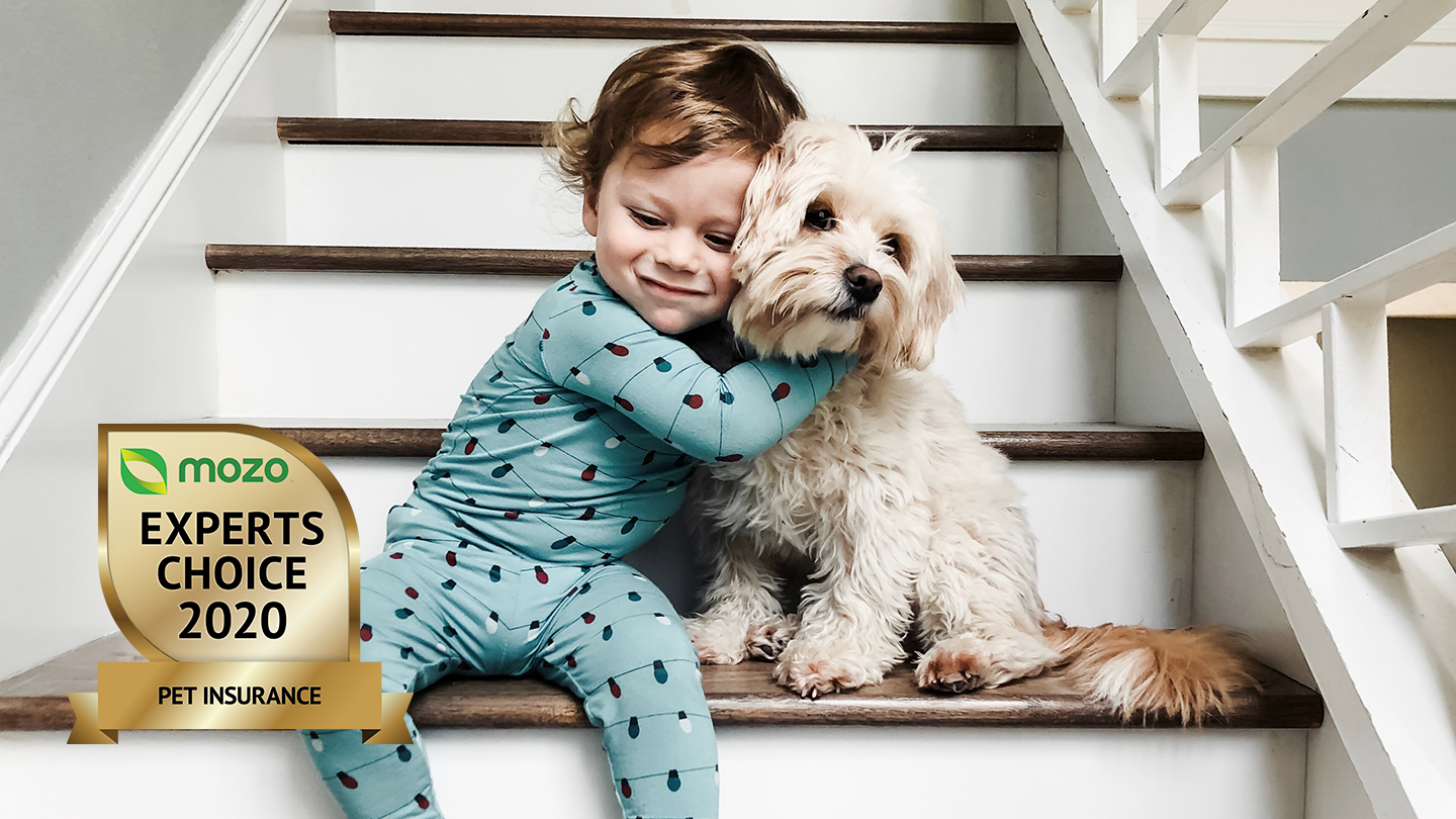 Toddler sitting on a stairwell, hugging their pet dog. There is a graphic image in the corner of the Mozo Experts Choice 2020 badge for Pet Insurance.