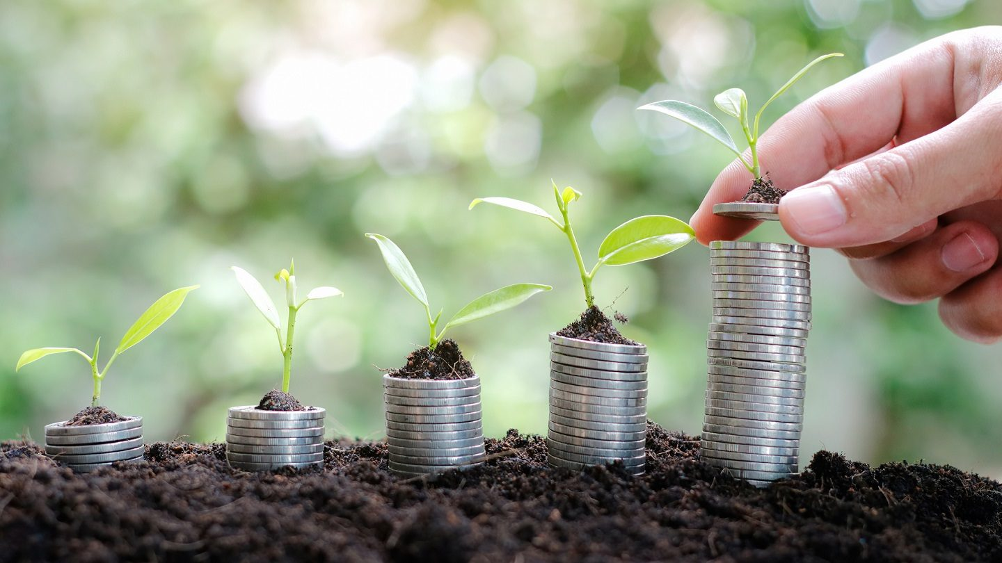 Savings growth illustrated with plants and coins