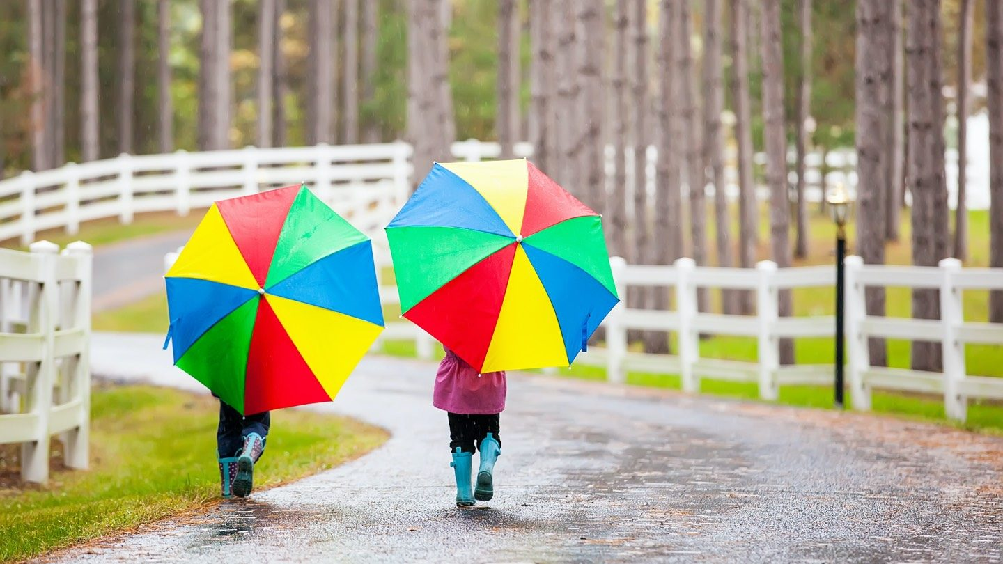 Two little girls walk down a rainy, country road, each holding colourful umbrellas.