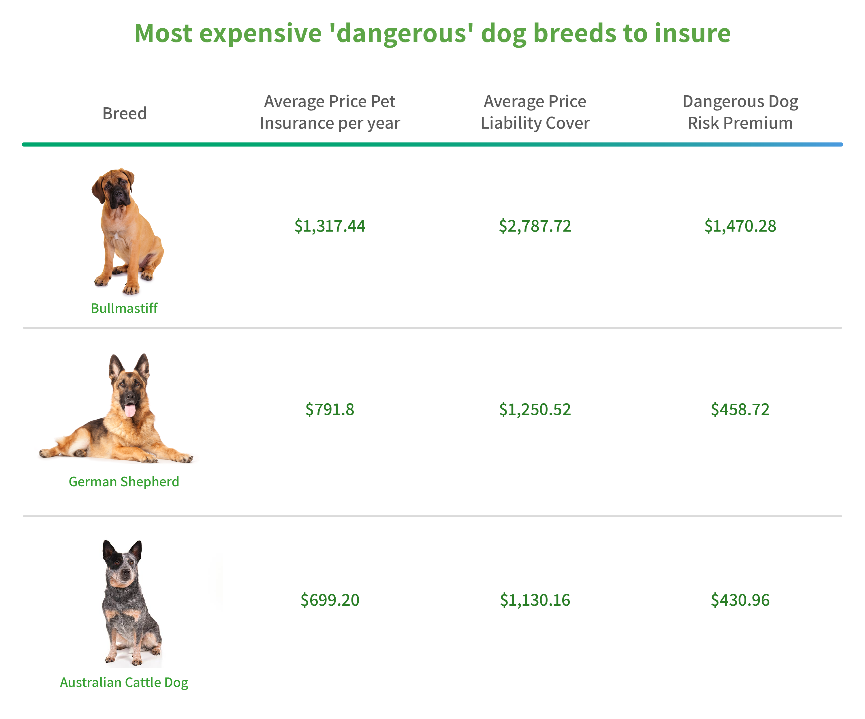 Graphic showing most expensive 'dangerous' dog breeds to insure