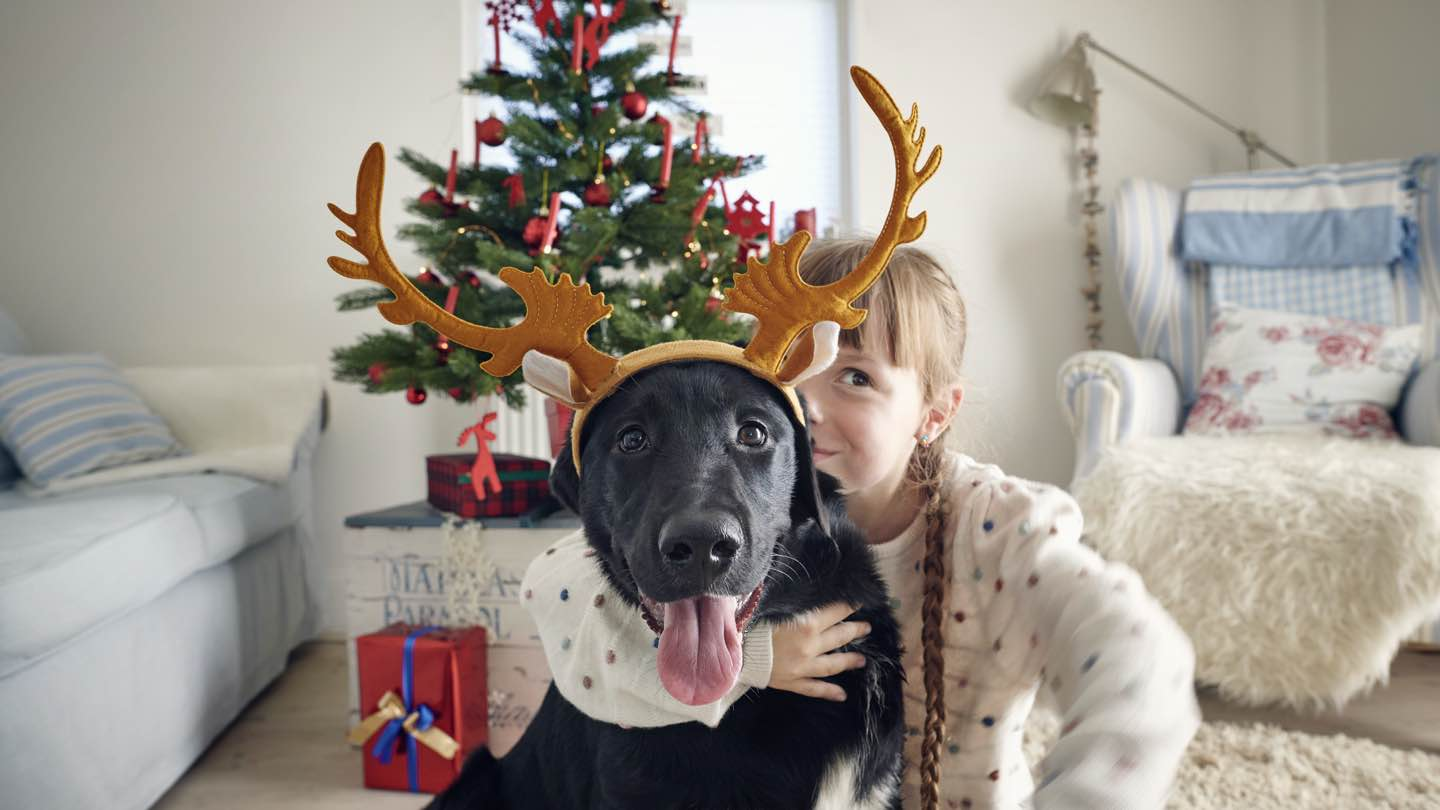Little girl hugs dog with reindeer antlers on, in front of Christmas tree.