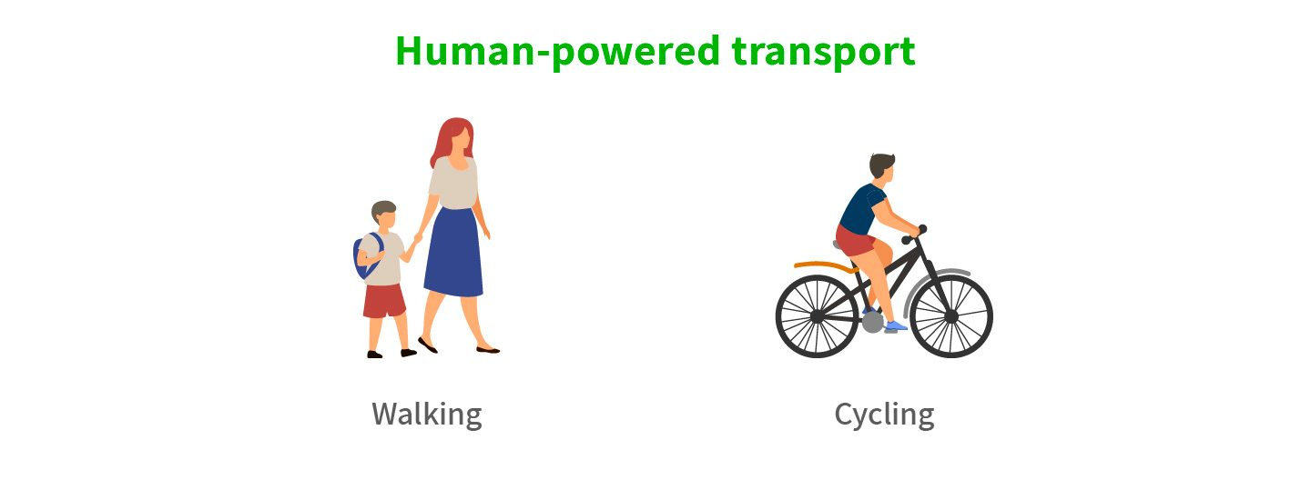 Walking and cycling as cheapest transport options.