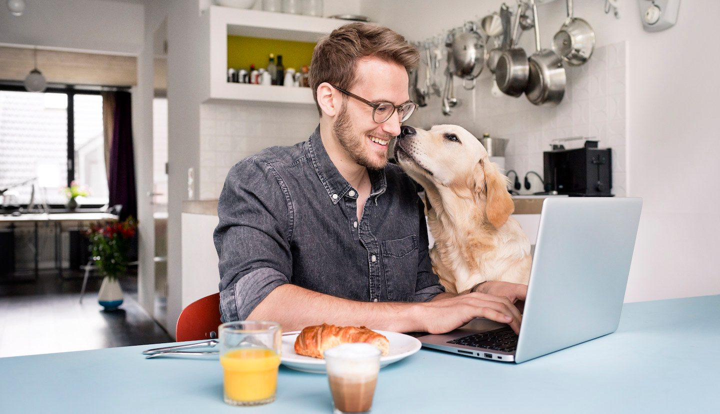 man and dog applying for personal loan on computer
