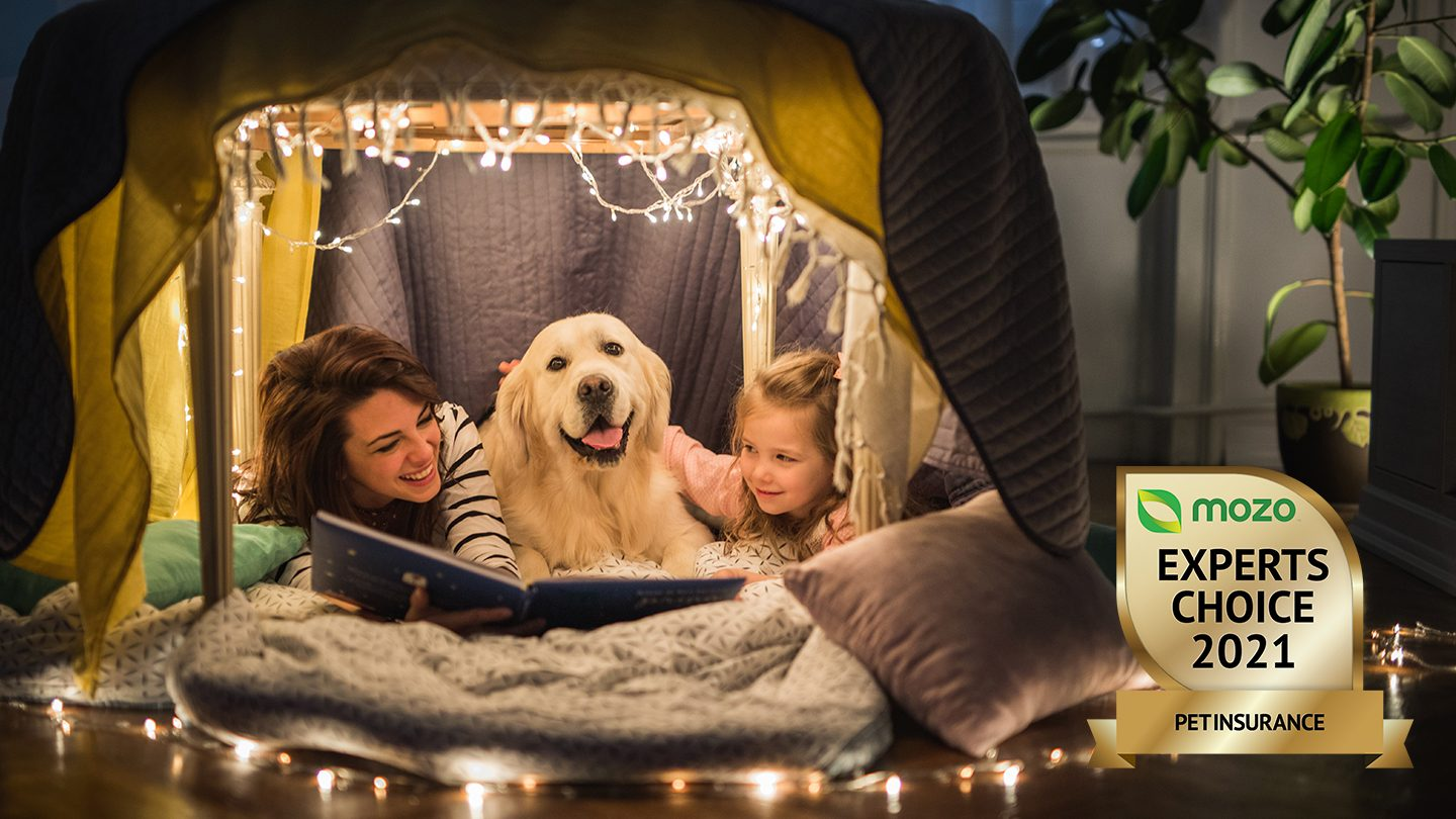 Family and dog with pet insurance cover sitting in a blanket fort under fairy lights.