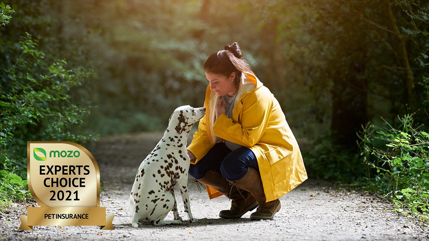 Woman in yellow raincoat, kneels next to Dalmatian. Mozo Experts Choice Awards badge is in the corner.