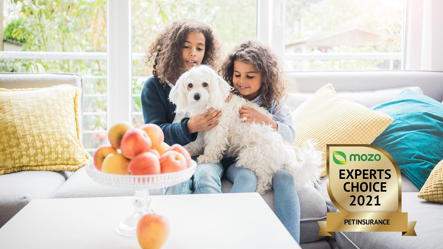 Two children sit on sofa, playing with fluffy white dog.