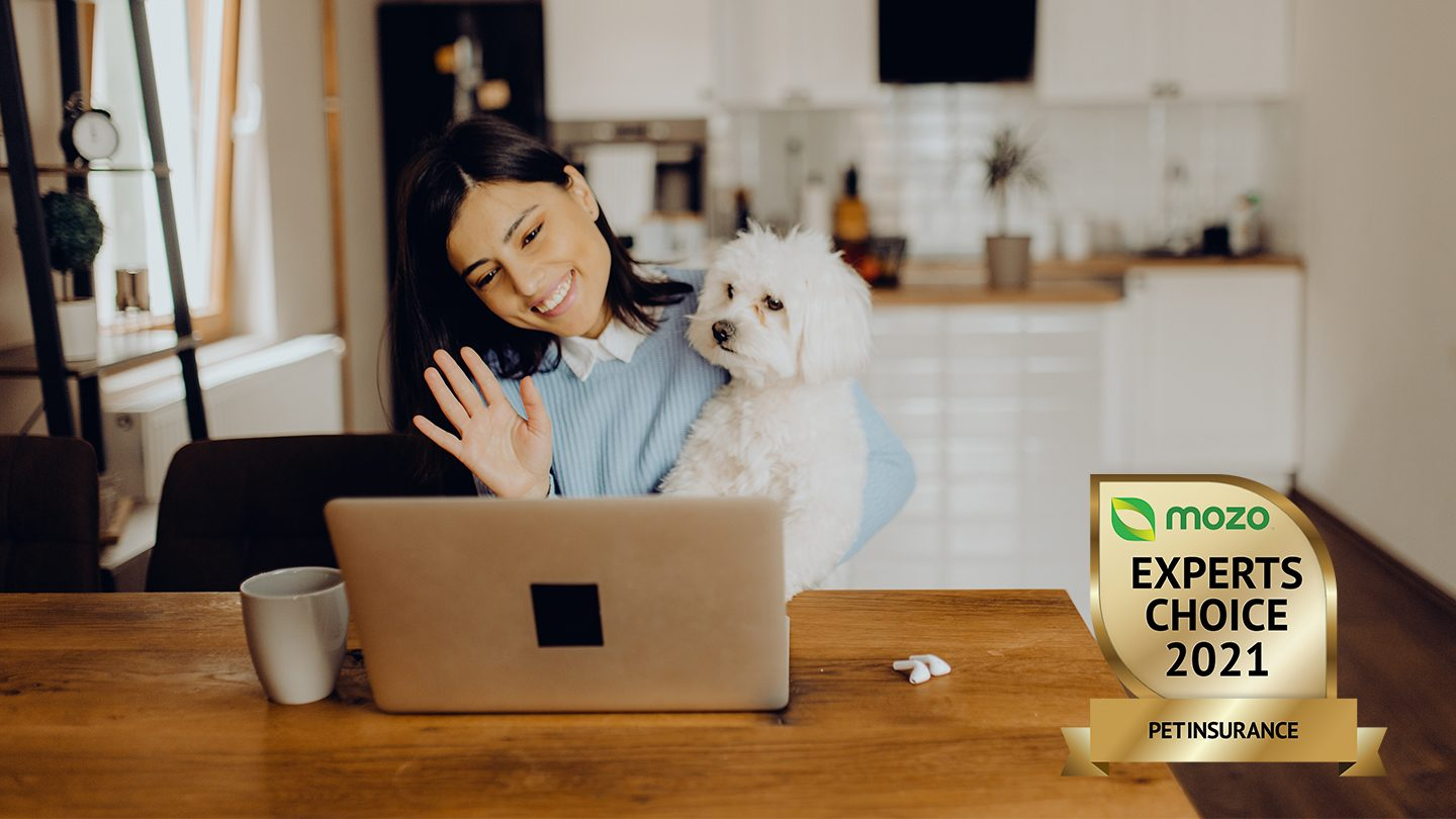 Woman at laptop with dog