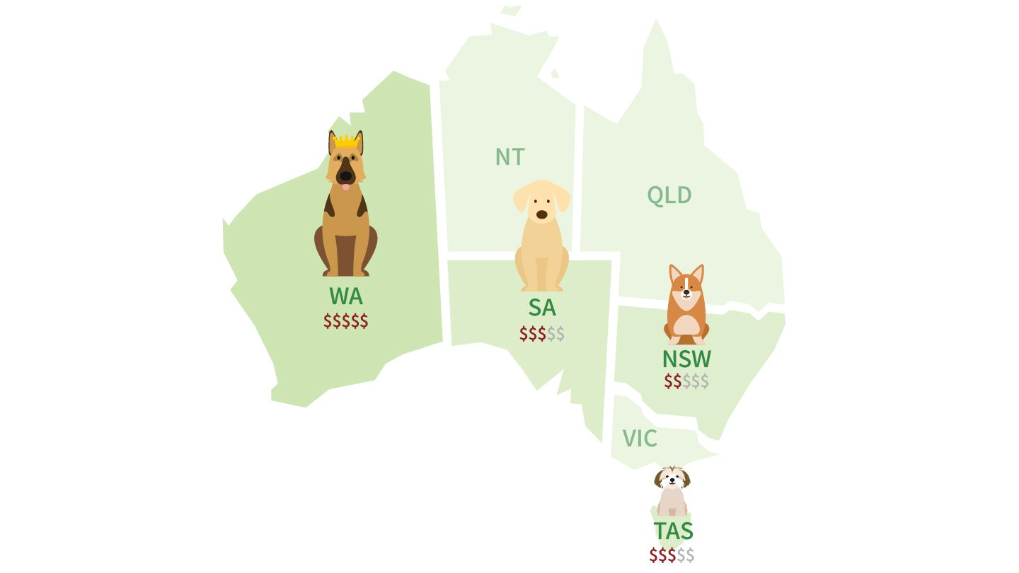 Pet Insurance Report Cost based on state