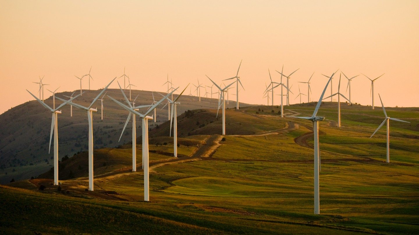 wind turbines in a field at dusk