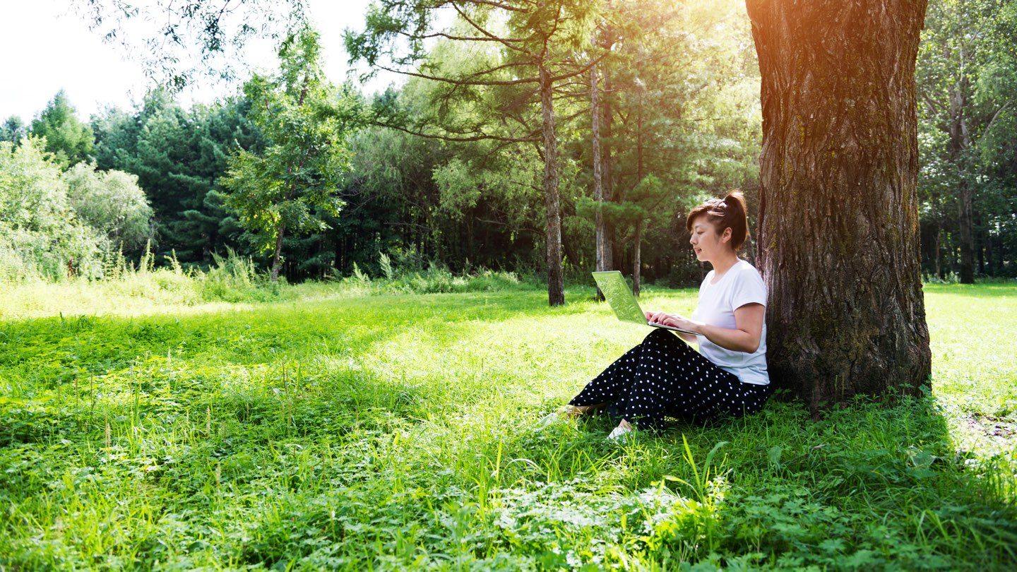 wide image of woman sitting under a tree with her laptop online banking spring cleaning her finances while outdoors