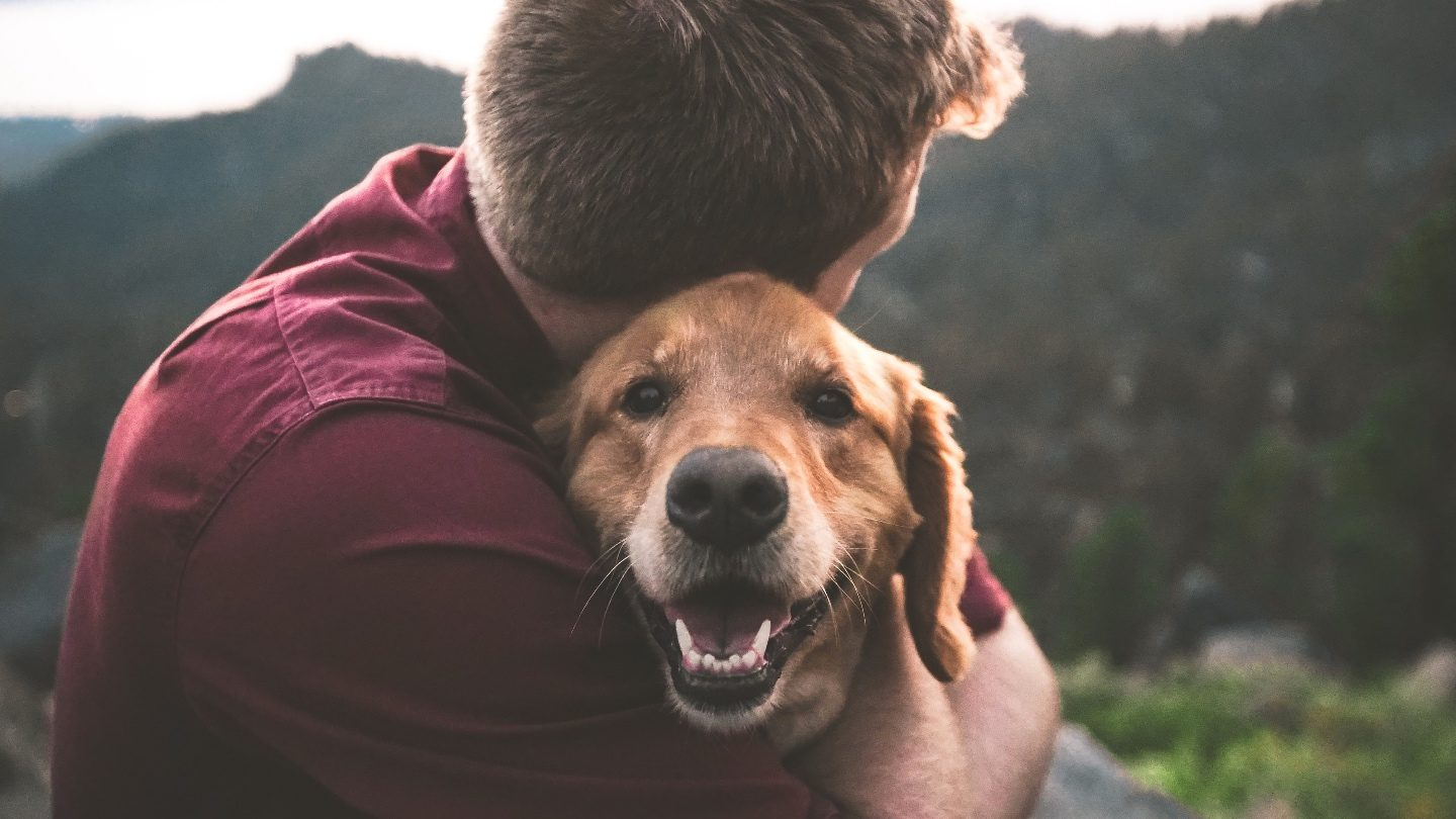 close up on a man hugging his dog that he has purchased pet insurance for